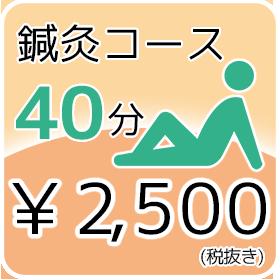 鍼灸コース 2,500円